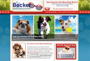 veterinary website example